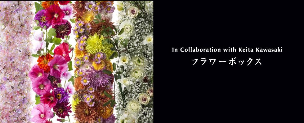 川崎景太/花グラフィック オリジナルギフトボックス