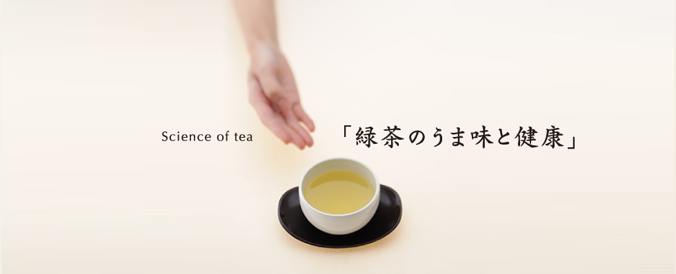 Science of tea Health Benefits and Umami of Green Tea」